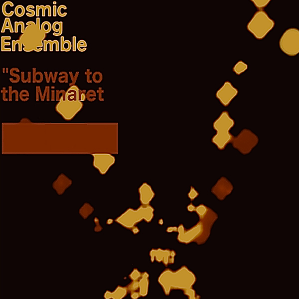 Cosmic Analog Ensemble