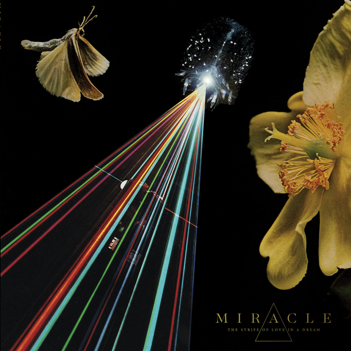 miracle-the-strife-of-love.jpg