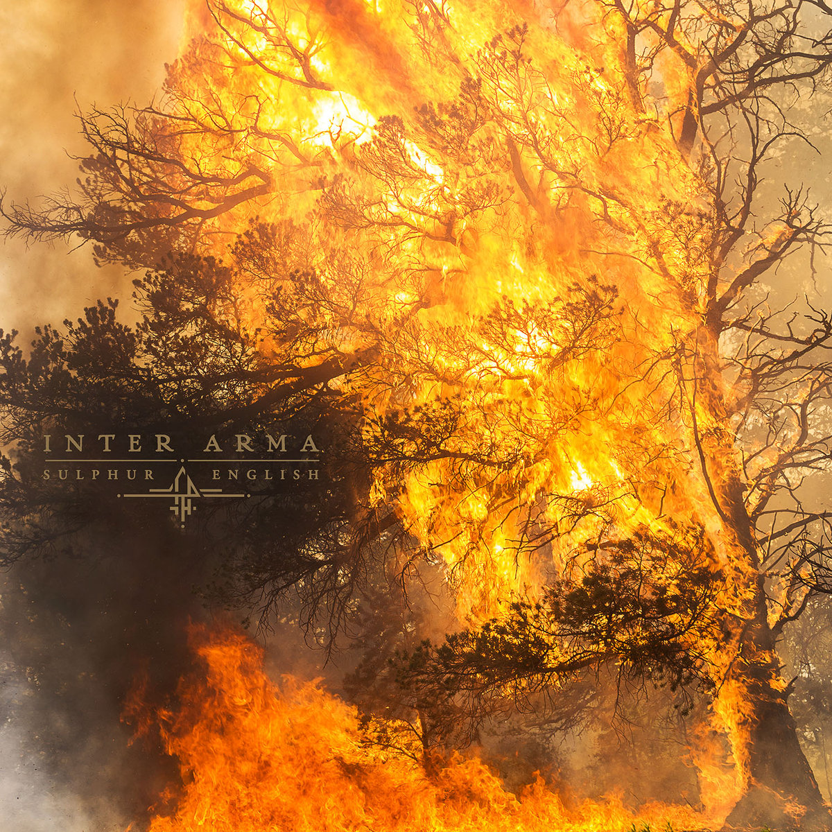 "Album of the Day: Inter Arma, ""Sulphur English"""