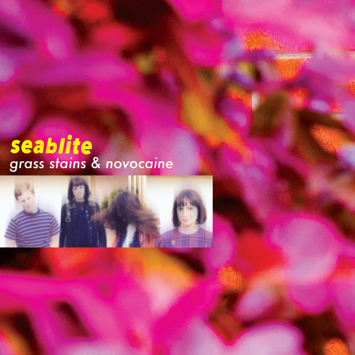 """Album of the Day: Seablite, """"Grass Stains and Novocaine"""