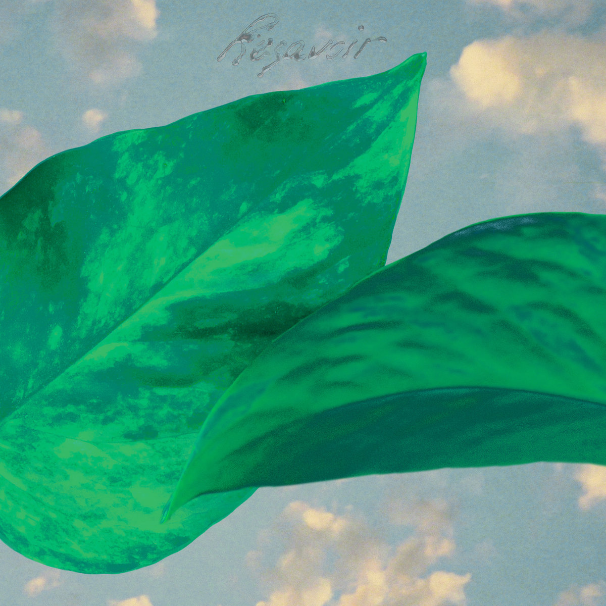 "Album of the Day: Resavoir, ""Resavoir"" « Bandcamp Daily"